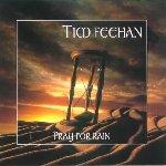 Tim Feehan - Pray For Rain